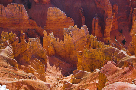 Cedar Breaks National Monument in Utah, USA photo