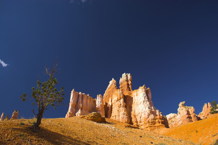 Rare rock formations of Bryce Canyon National park Stock fotó