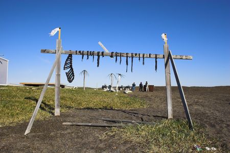 inuit: Traditional inuit food - reindeer jerky on wooden rack drying at the shore of an Arctic Ocean