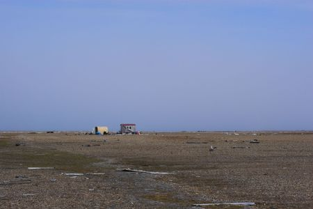 polar station: Bird study research station in Arctic Ocean island