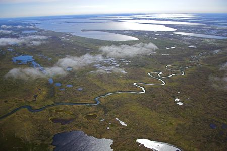 Aerial photos of arctic tundra wetlands for backgrounds and textures  Stock Photo