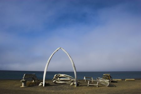 remains: Various views and structures of whale bones in native whaling village on Arctic Ocean shore