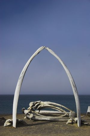 whaling: Various views and structures of whale bones in native whaling village on Arctic Ocean shore