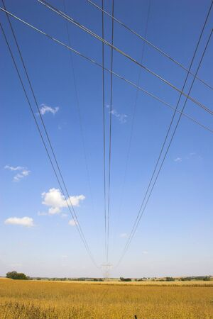 Powerline among farm landscapes with sunny maize soy and wheat fields photo