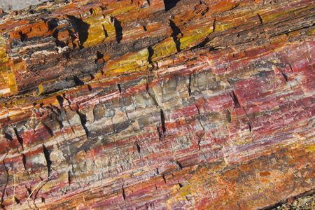 geologic: Unique geologic formation with logs petrification during prehistoric mineralization, Petrified Forest and Painted Desert National Park  Stock Photo