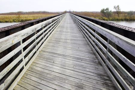 View of the trail with wooden walkways
