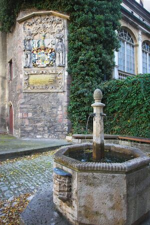 ivy wall: Medieval university emblem and stone fountain in Jena, Germany