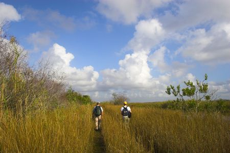 Two men hiking trails in Florida Everglades national park photo
