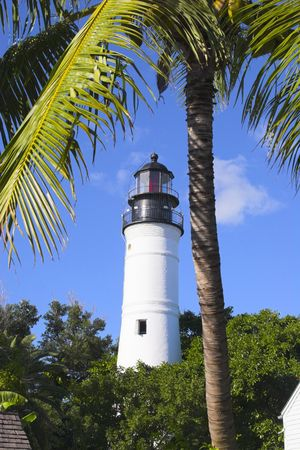 Palm trees and white lighthouse tower in Key West, Florida