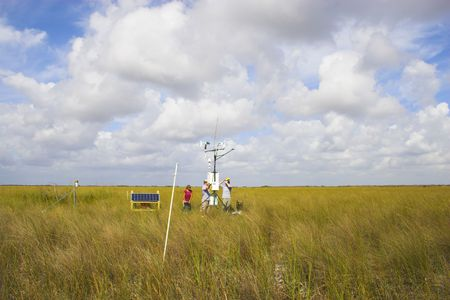 Scientists installing scientific instruments in the grass field Stock Photo