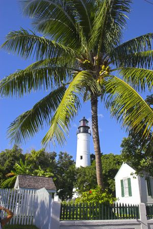 Palm trees and white lighthouse tower in Key West, Florida photo