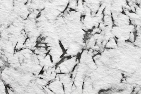Background - Fragment of ice on the frozen pond photo
