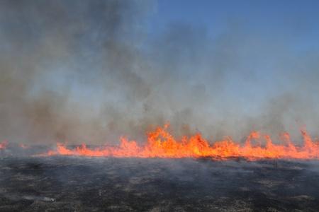 Prescribed prairie burn on the Great Plains in Nebraska Stock Photo