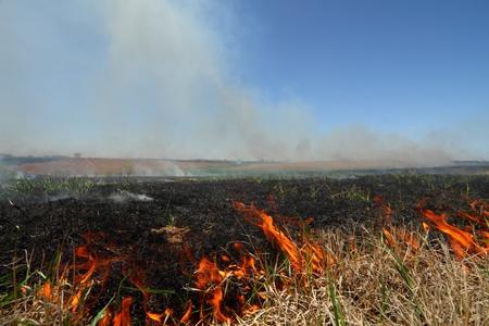 great plains: Prescribed prairie burn on the Great Plains in Nebraska Stock Photo