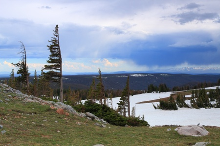 Landscapes in the Snowy Range Mountains of Wyoming