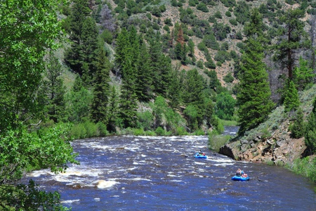 White water rafting in the mountain river of Wyoming