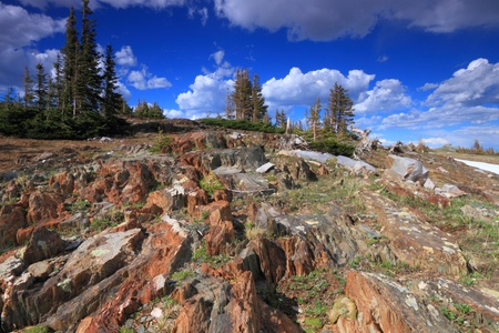 Tundra landscape in the Snowy Range Mountains of Wyoming Stock Photo