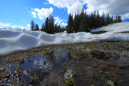 Beautiful landscape with melting snow in Wyoming Snowy Range Mountains