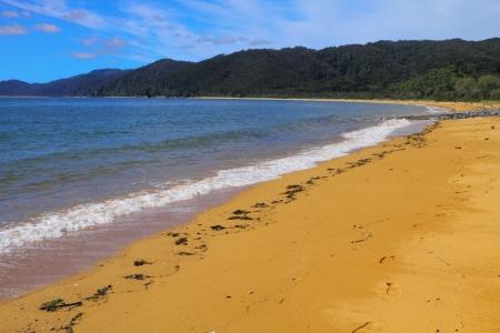 Beautiful sandy beach of Abel Tasman National Park, South Island, New Zealand photo