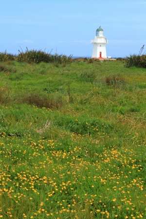 Lighthouse in summer landscape in Catlins, New Zealand photo
