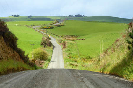 Country road in Catlins, New Zealand