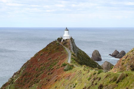 Beautiful view along path to Nugget Point Lighthouse, Otago Coast, New Zealand photo