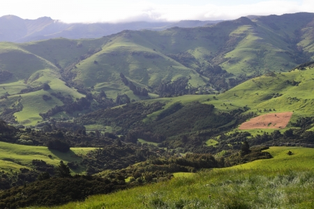 Stunning hilly landscape in Canterbury Region of New Zealand Stock Photo - 17580124