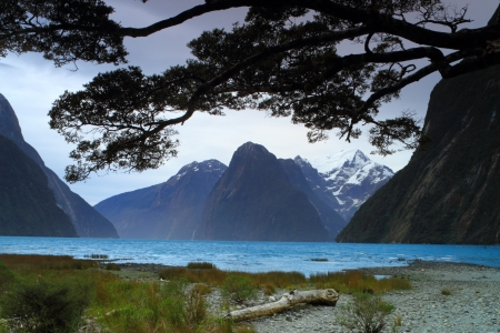 milford: Mitre Peak in Milford Sound, South Island, New Zealand