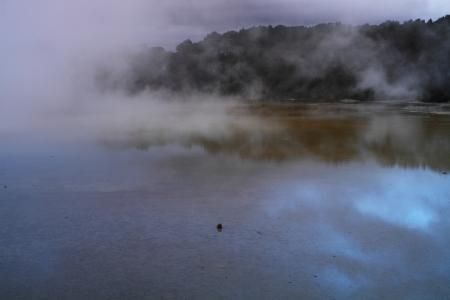 Beautiful geyser valley in Rotorua, New Zealand 版權商用圖片 - 22118839