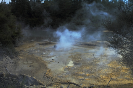 Beautiful hot mud boiling in the geyser field in Rotorua, New Zealand photo