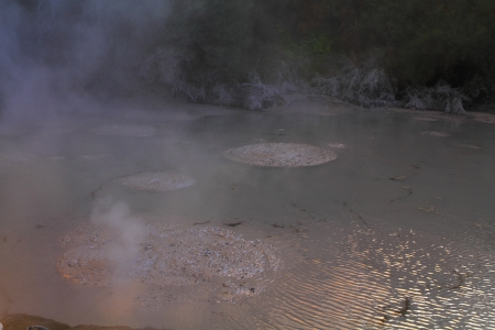 Hot mud boiling in the geyser field in Rotorua, New Zealand
