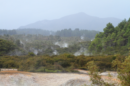 Volcanic landscape with steaming hot springs in Rotorua, New Zealand photo