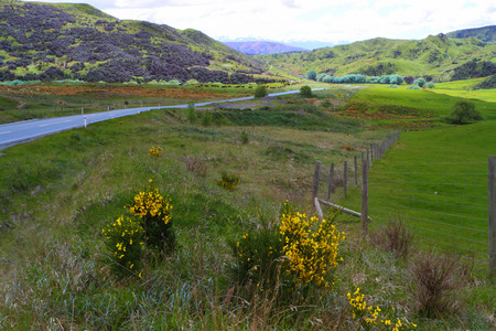 A road going through beautiful mountain vistas in  New Zealand photo