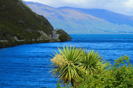 Beautiful lake shore in South Island, New Zealand photo