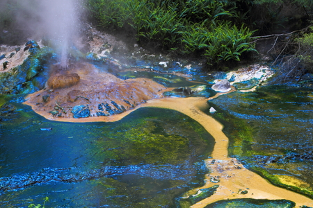 calcite: Colorful hot spring crater in Rotorua, New Zealand