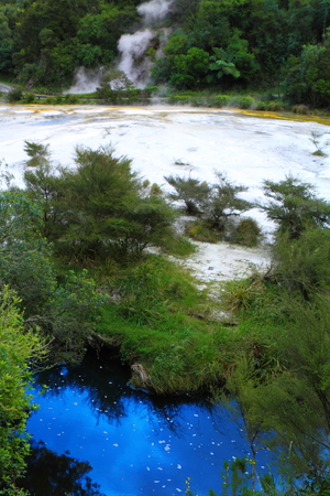 Colorful hot spring with mineral deposits in Rotorua, New Zealand photo