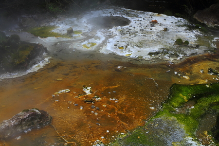 Colorful fumaroles in geyser valley in Rotorua, New Zealand Stock Photo - 24044574