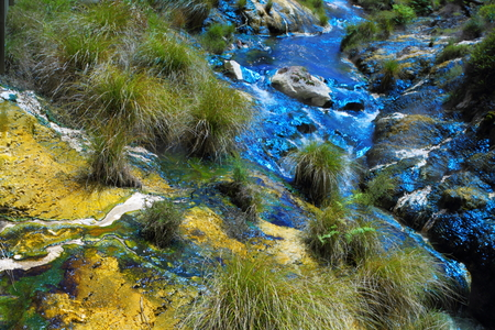 Colorful hot spring in geyser valley in Rotorua, New Zealand photo