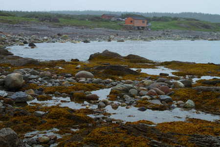 Algae covered shore and fishing village after the rain photo