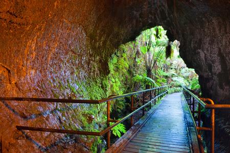 Entrada a Thurston Lava Tube en Parque Nacional de Volcanes de Hawaii Foto de archivo