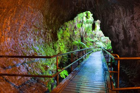 Entrance to Thurston Lava Tube in Hawaii Volcanoes National Park 免版税图像