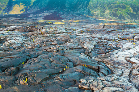 volcano: Amazing shapes and patterns of molten cooled lava landscape in the evening in Hawaii Volcanoes National Park, Big Island, Hawaii