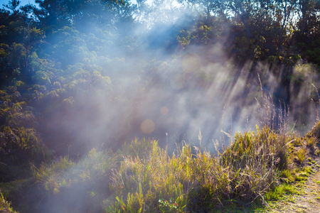 big island: Sulfur gas vents along the trail in Hawaii Volcanoes National Park, Big Island, Hawaii Stock Photo