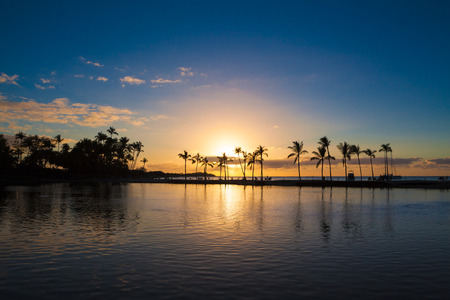tropical tree: Beautiful sunset on Hawaiian beach, Big Island Stock Photo