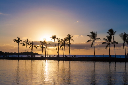 palmier: Beautiful sunset on Hawaiian beach, Big Island Banque d'images