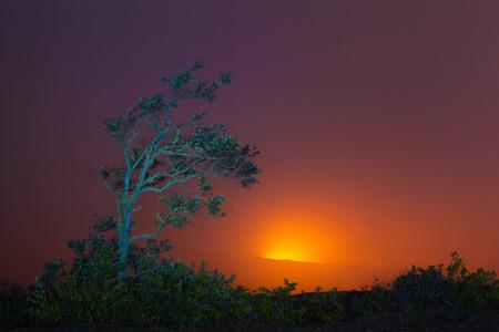 burning bush: Beautiful glow from volcanic eruption at night on Big Island, Hawaii