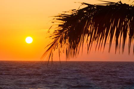 big island: Beautiful orange sunset on Hawaiian beach, Big Island