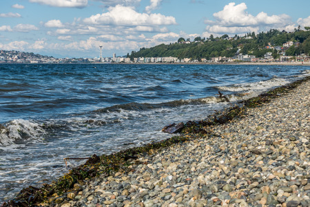 puget: Alki Beach on a sunny June day.