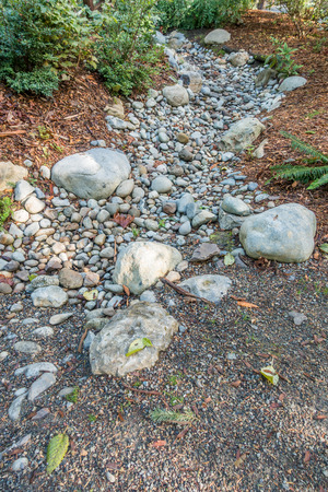 bellevue: A dry stream bed in Bellevue, Washington waits for rain.