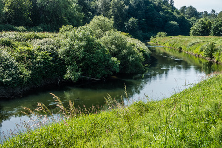 Lush foliage surrounds the Green River as it flow throught Kent, Washington.
